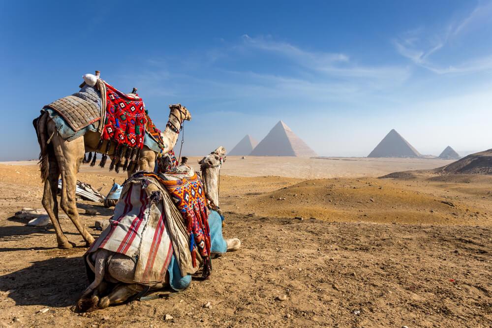 Wczasy w Egipcie, widok na piramidy