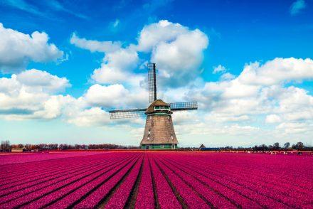 Ubezpieczenie do Holandii – kiedy należy je wykupić?