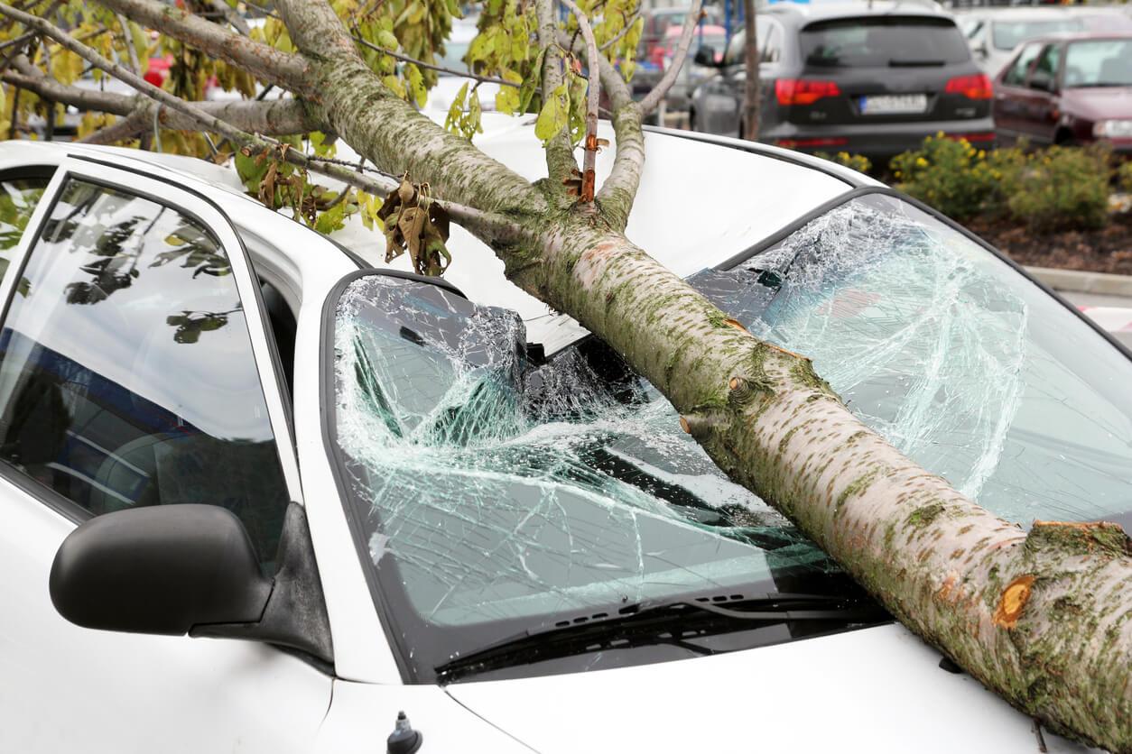 Zniszczenie samochodu przez siły natury lub żywioł