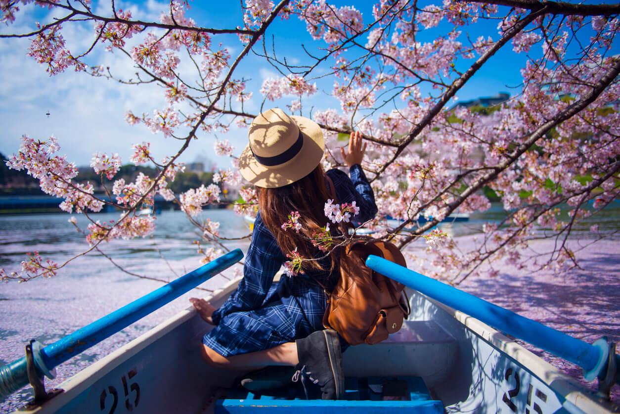 Ubezpieczenie Japonia – musisz je mieć