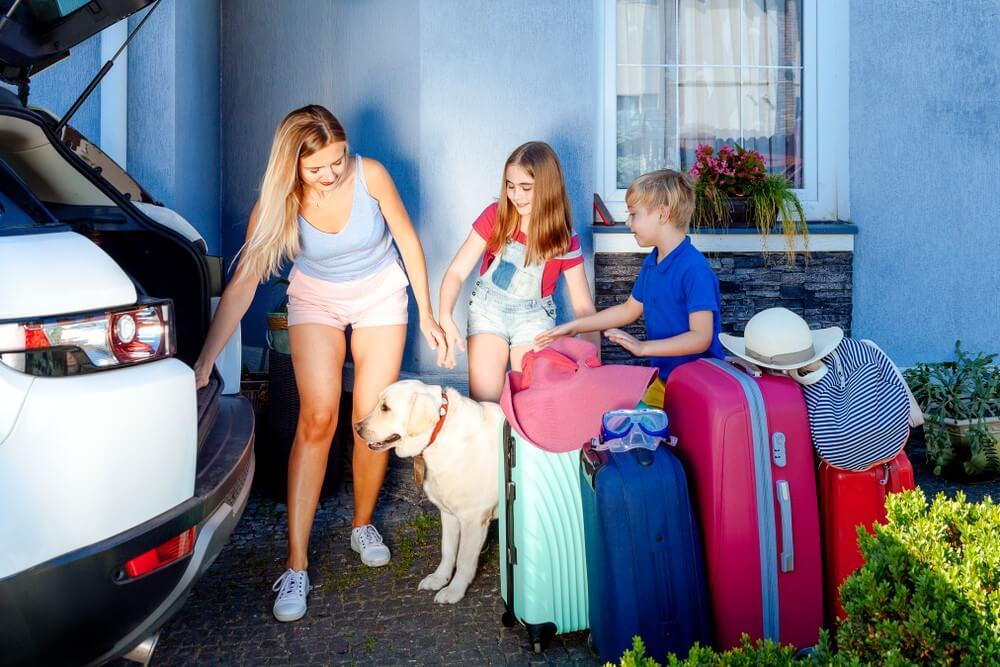 Wyjazd z psem za granicę wymaga dopełnienia dodatkowych formalności